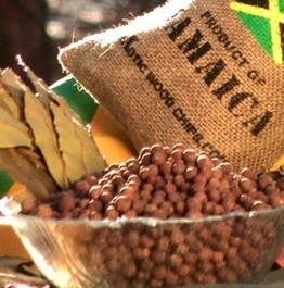 Jamaican All-Spice: Natural Antibiotic Wonder